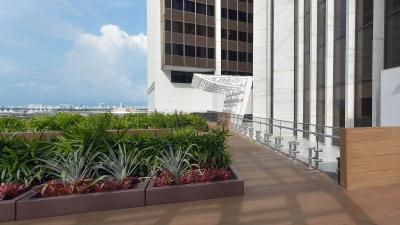 Photo of Suntrust International Center Rooftop Garden.